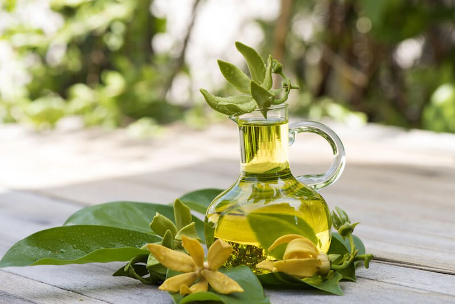 Ylang Ylang Oil for Improving Complexion