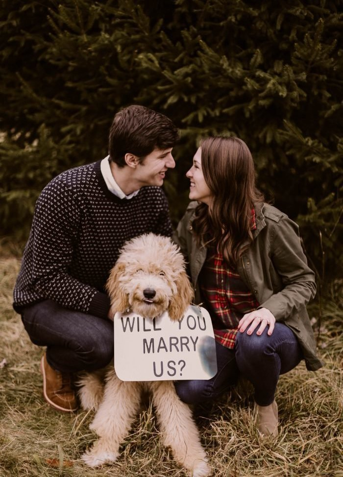 best marriage proposal idea - with puppy