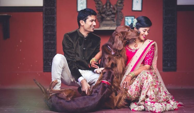 Bridal Photoshoots With Pets