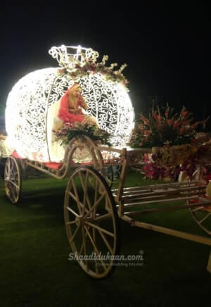 Golden Dazzle Events and Baraat Processionist