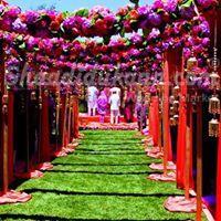 Red Carpet Evento