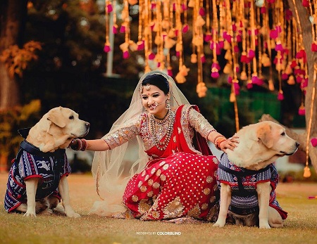 19 Cute Ideas To Make Your Pupper A Part Of Your Weddin...