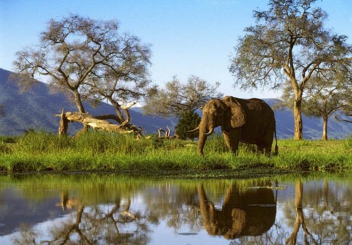 zimbabwe budget honeymoon destination