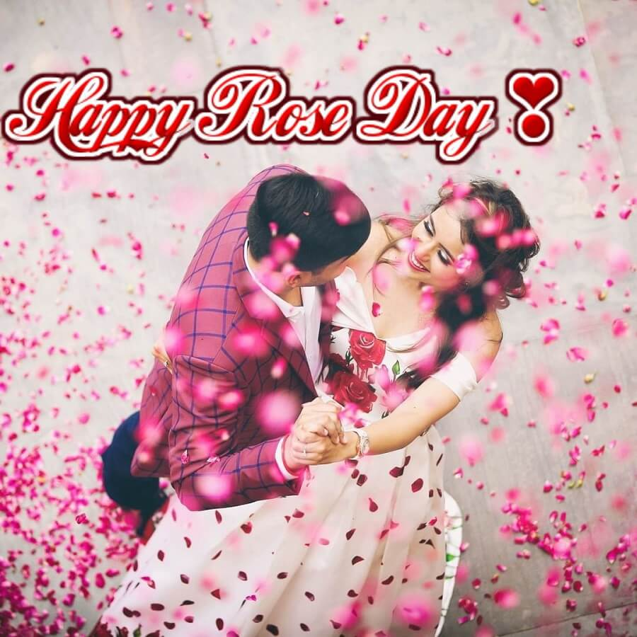 Happy Rose Day 2021: Everything You Should Know- Origin, Rose Day Quotes, Proposal Ideas, and Gifting Ideas.
